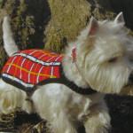 Вязание  попоны для собаки с жаккардовым узором