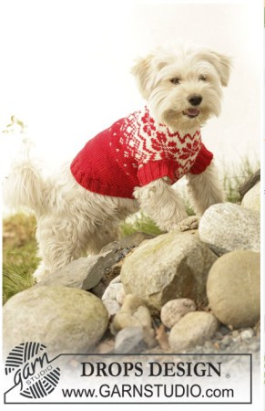 вязаный свитер для собаки,  свитер для собаки схема
