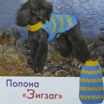 Вязаная попона для собаки с узором «зигзаг»