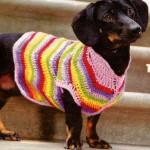 Вязание для собак крючком: жилет в полоску для таксы