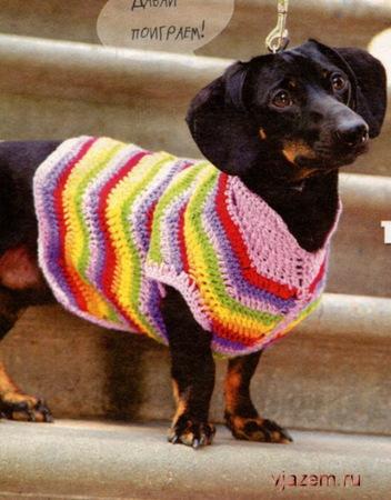 вязание для собак крючком