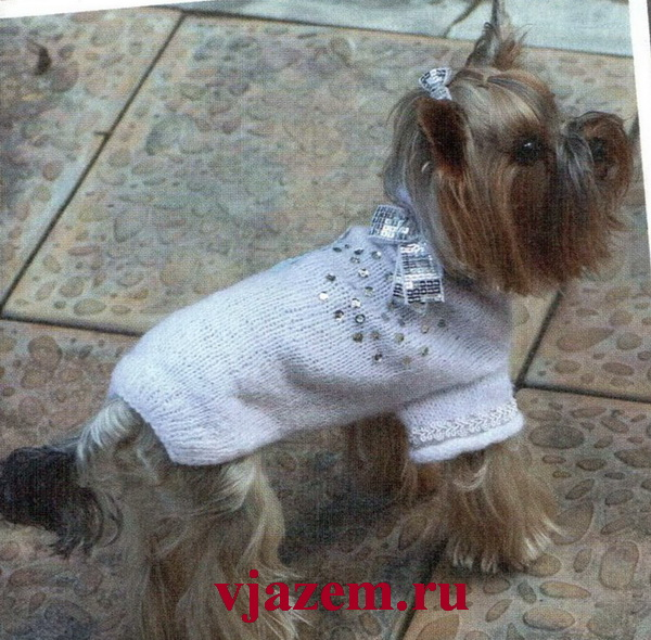 пуловер для йорка